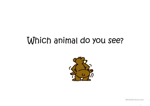 Which animal do you see