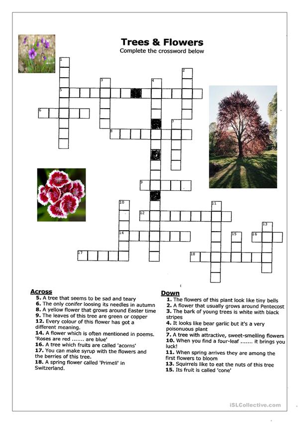 Crossword about trees and flowers