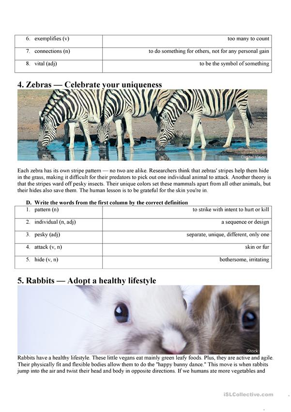 Reading Comprehension 6 Lessons from Animals