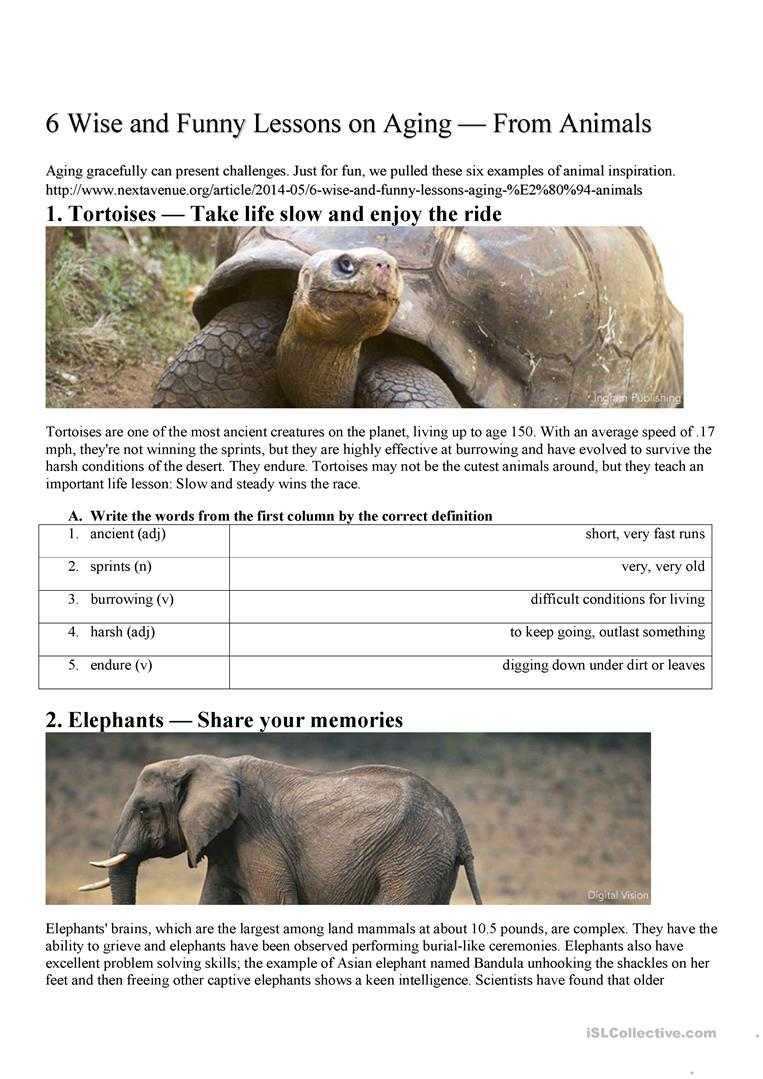 Reading Comprehension 6 Lessons from Animals worksheet - Free ESL