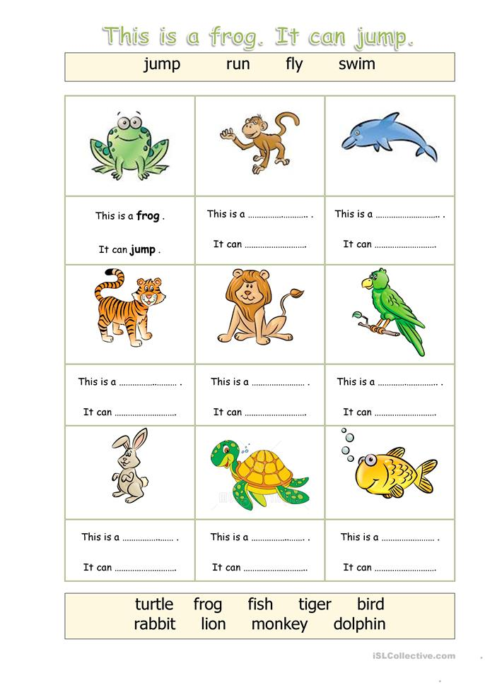 animals can worksheet free esl printable worksheets. Black Bedroom Furniture Sets. Home Design Ideas