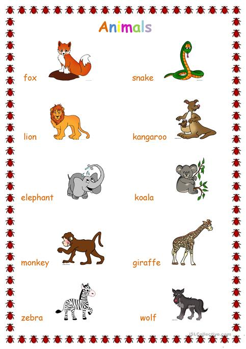 Animals Jungle Worksheet Free Esl Printable Worksheets Made By
