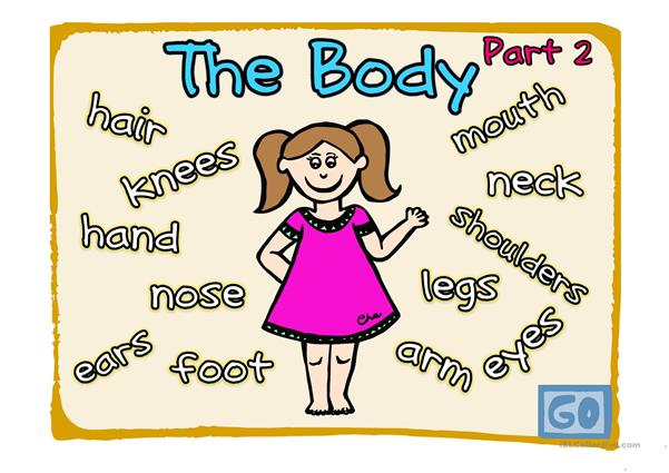 The body (Part 2-2)