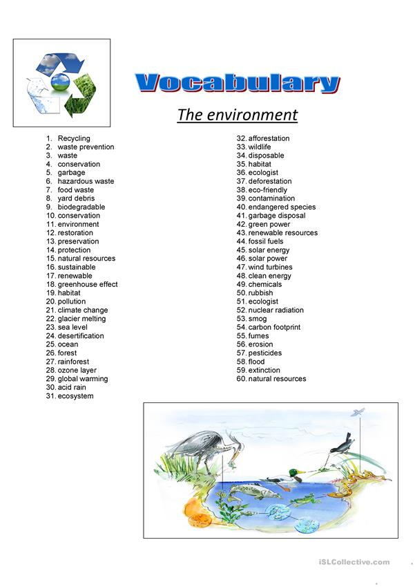 Vocabulary about environment