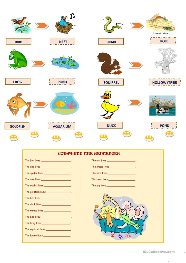 worksheet Animals And Their Homes Pictures Worksheets animals and their homes worksheet free esl printable worksheets full screen