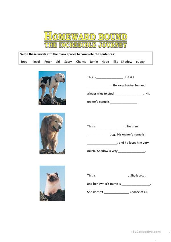 Homeward Bound Characters Worksheet