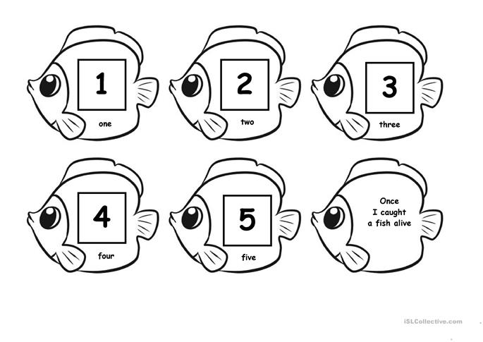... fish a live worksheet - Free ESL printable worksheets made by teachers