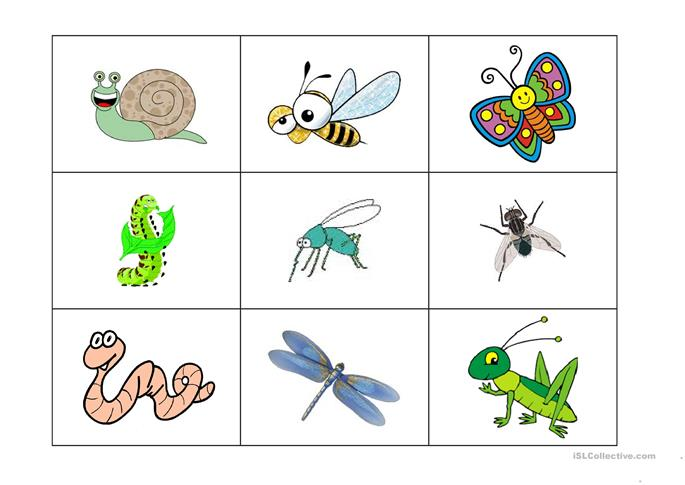 insects bingo game worksheet Free ESL printable worksheets made – Insects Worksheets for Kindergarten