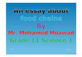 short essay about food chain Top of the food chain tc boyle as you move up the food chain and the efficacy—or lack thereof—of certain methods story short, the cats ate up.