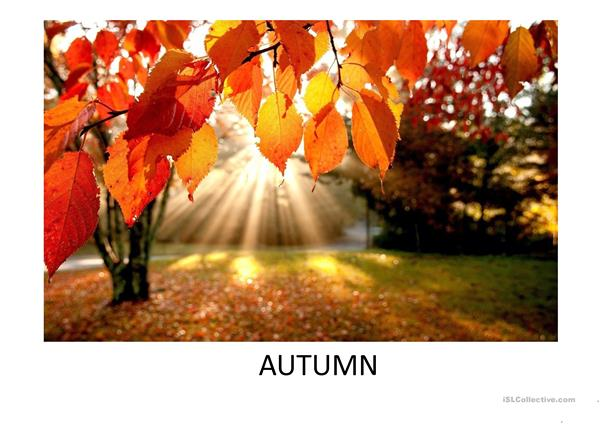 Autumn vocabulary