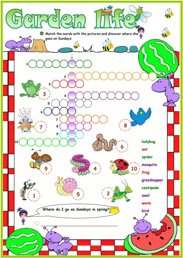 Animals in the garden crossword