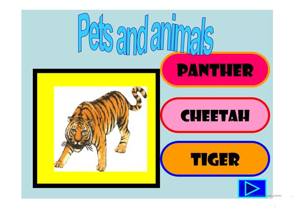 Pets and other animals , multiple choice activity with a little animation