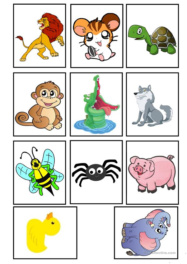 Animals flashcards #2