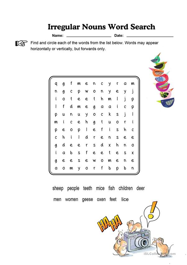 Irregular Nouns Word Search Easy