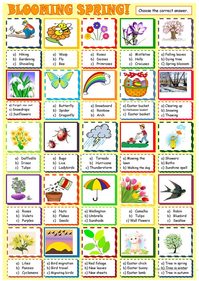 Spring: multiple choice activity - ESL worksheets