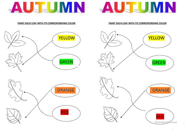 AUTUMN- MATCHING ACTIVITY (COLOURS)