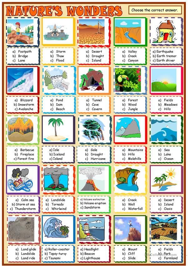 Nature's wonders:multiple choice activity 1