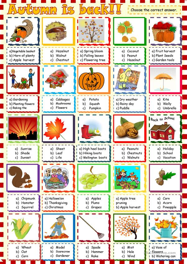 Autumn is back: multiple choice activity