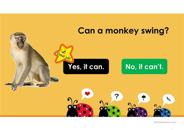 Can Can't - Animals' Abilities