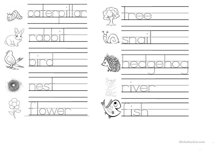 Tracing words connected with Spring treetops unit 5 worksheet – Tracing Names Worksheet