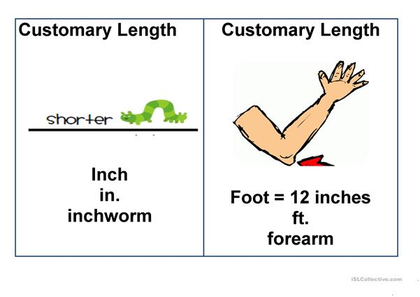 Measurement Flashcards