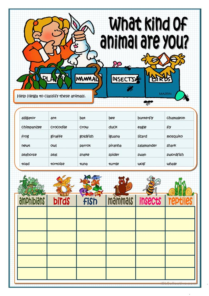 WHAT KIND OF ANIMAL ARE YOU? Worksheet
