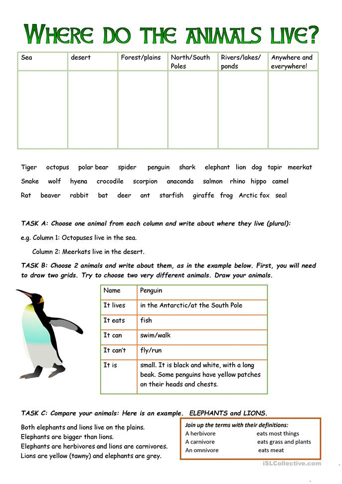 Who What Where When Worksheets : Where do the animals live worksheet free esl printable