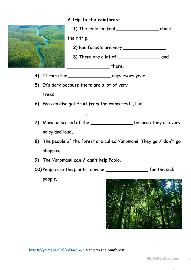 A trip to the rainforest - English ESL Worksheets