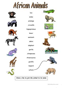the description of animals on a