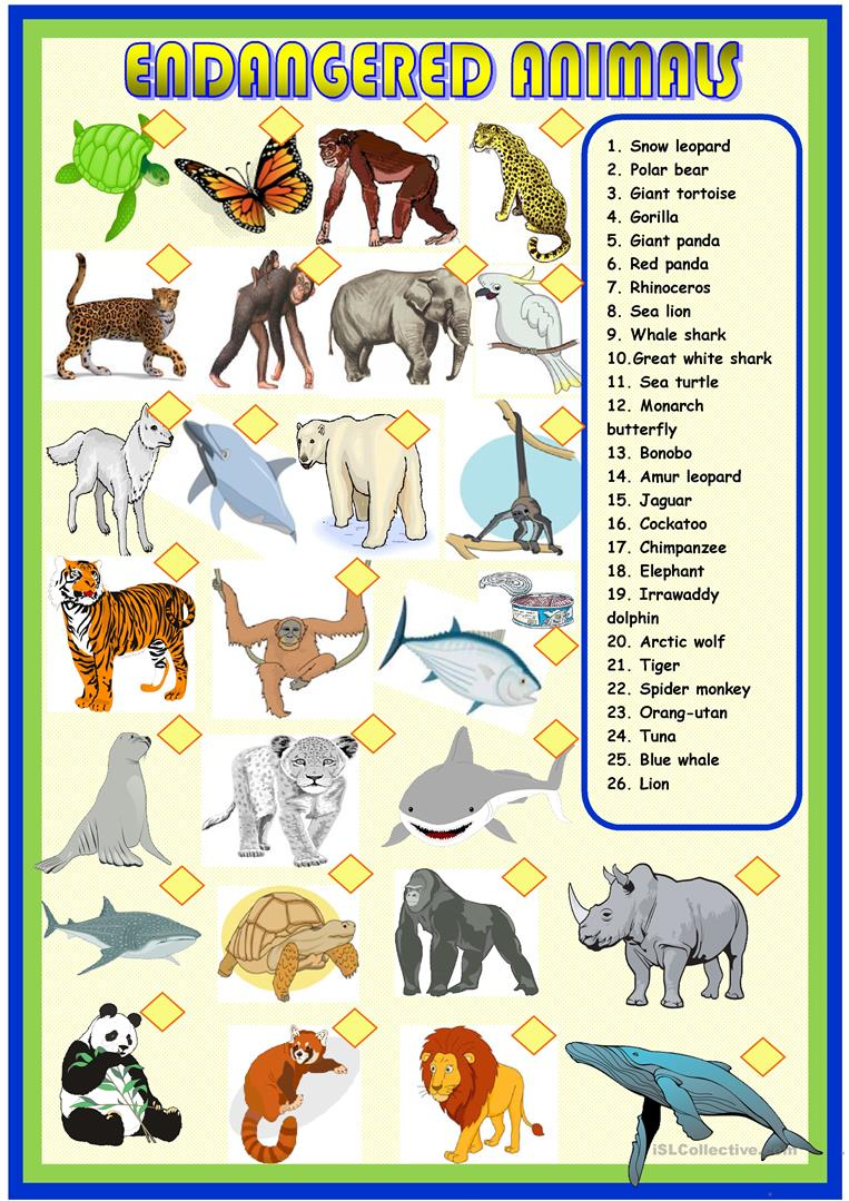 Endangered Animals - the passive voice by jobowler - Teaching ...