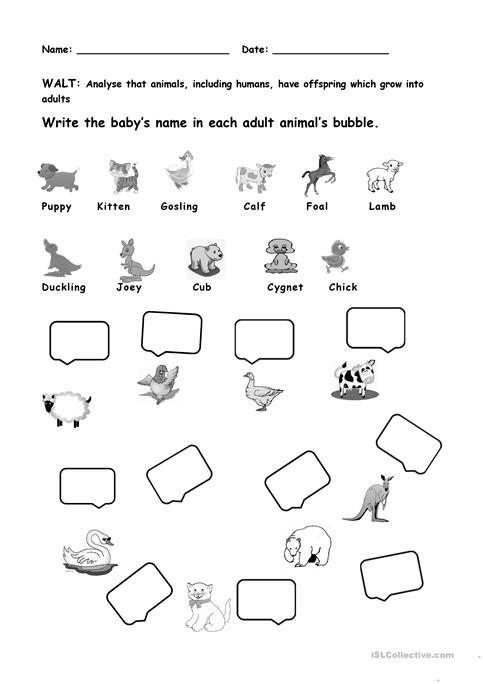 Animals and their young ones worksheet - Free ESL printable ...