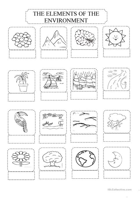 Write The Names Of These Elements Of The Environment Worksheet