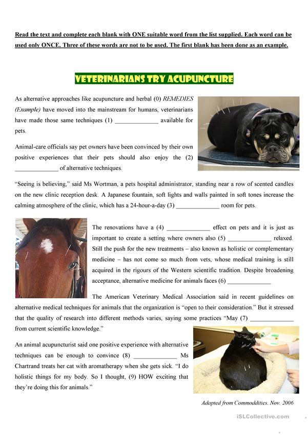 VETERINARIANS TRY ACUPUNCTURE - English ESL Worksheets