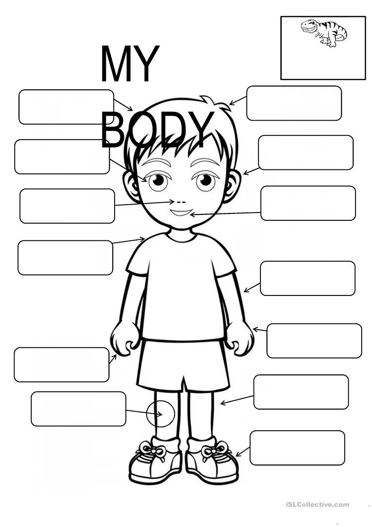 Body Parts Fill In The Blanks Worksheet Free Esl Printable