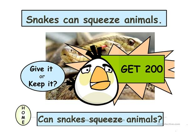 Teaching simple present Do, Does, Can with wild animals