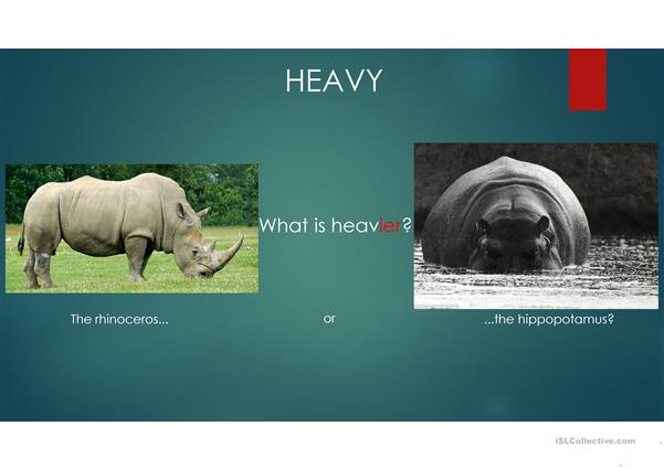 Comparatives - Animals