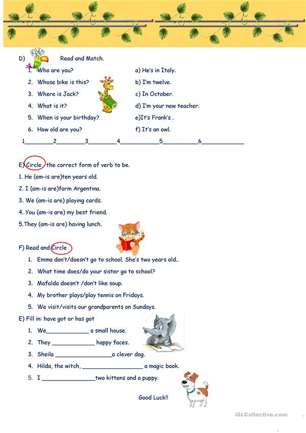 Grammar Review Beginners June 2017.