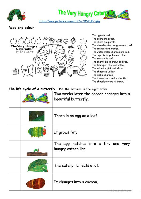 The Very Hungry Caterpillar - Comprehension
