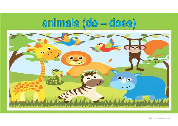 Do does - animals