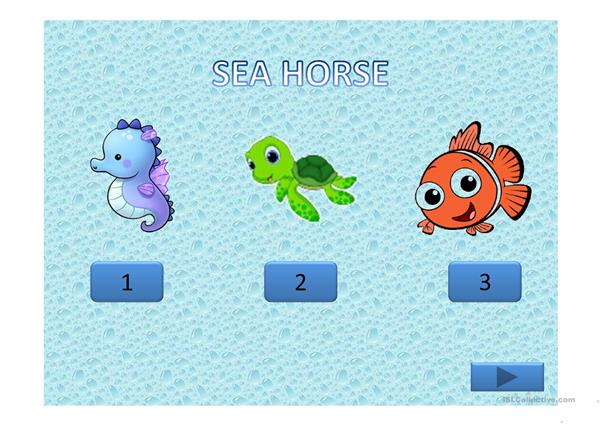 Guessing games sea animals