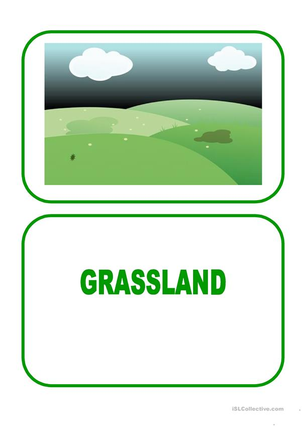 Flashcards - landscapes