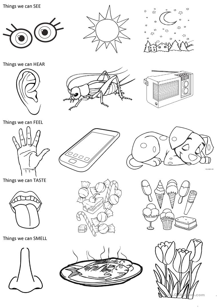 The 5 senses - coloring exercise worksheet - Free ESL printable worksheets made by ...