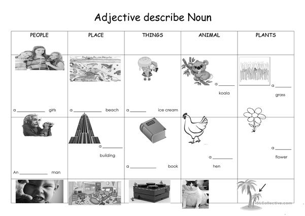 Adjective describe noun