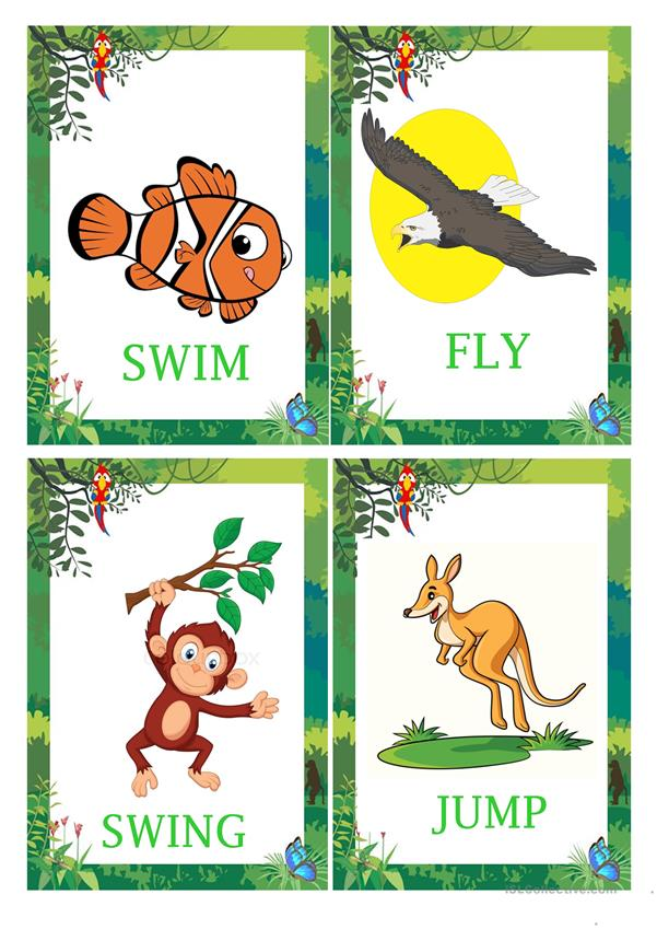 ANIMAL ACTIONS BIG FLASHCARDS