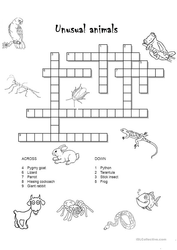 Unusual animals crossword