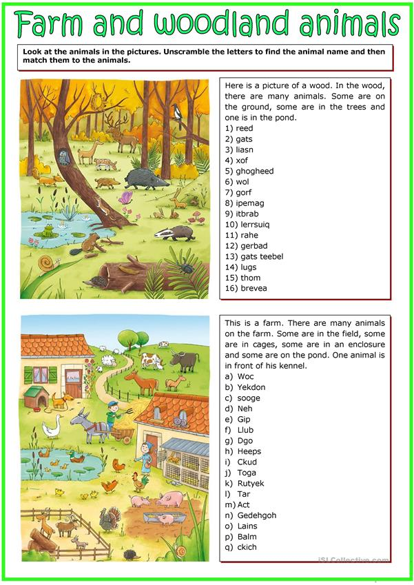 Farm and woodland animals