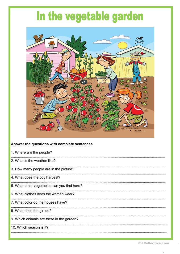 picture description in the vegetable garden worksheet free esl printable worksheets made by. Black Bedroom Furniture Sets. Home Design Ideas