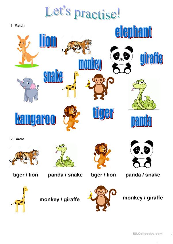 Learn the animals in English (3)