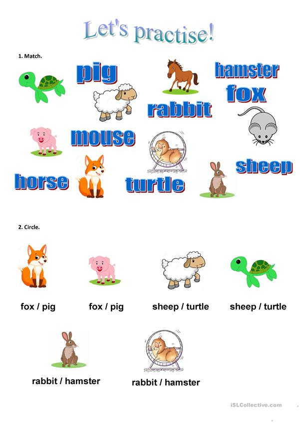 Learn the animals in English (2)