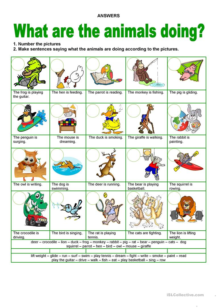 Animals   What are they doing worksheet   Free ESL ...